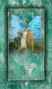 Butterfly - Lepke