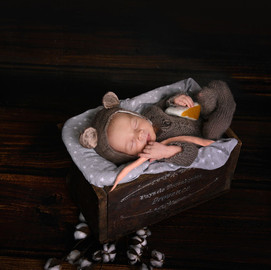 Baby Newborn Mouse