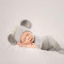Newborn Elephant boy