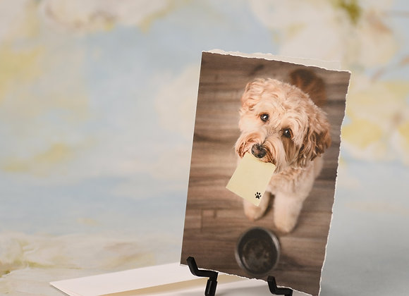 Labradoodle holding Post-It note