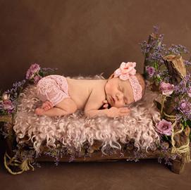 Log Bed Newborn