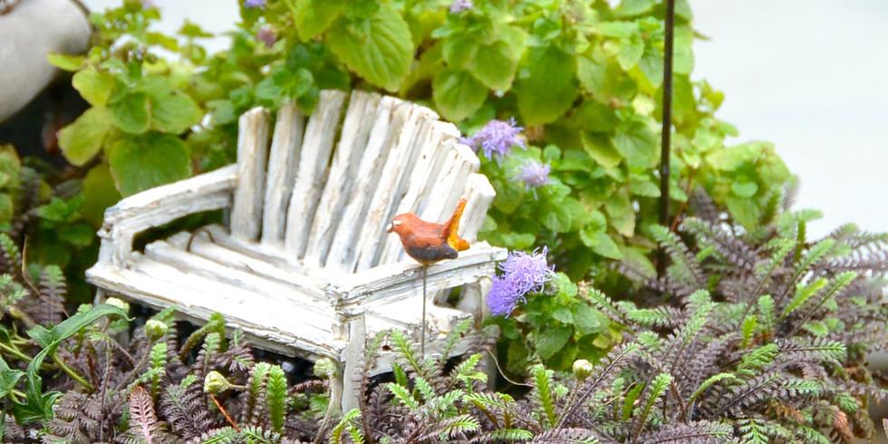 Miniature Garden Group Workshop