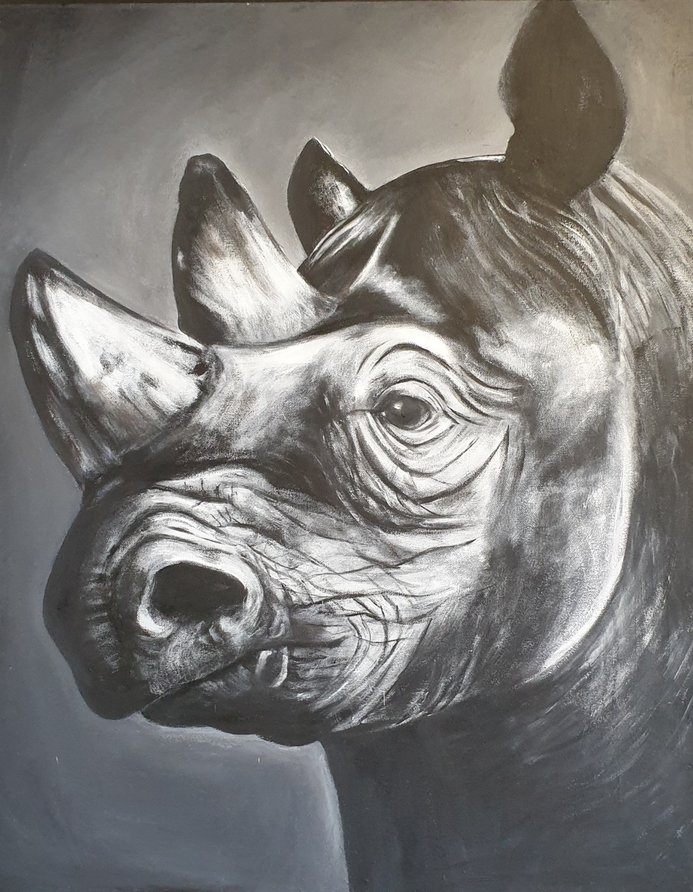 Rhino%202_edited.jpg