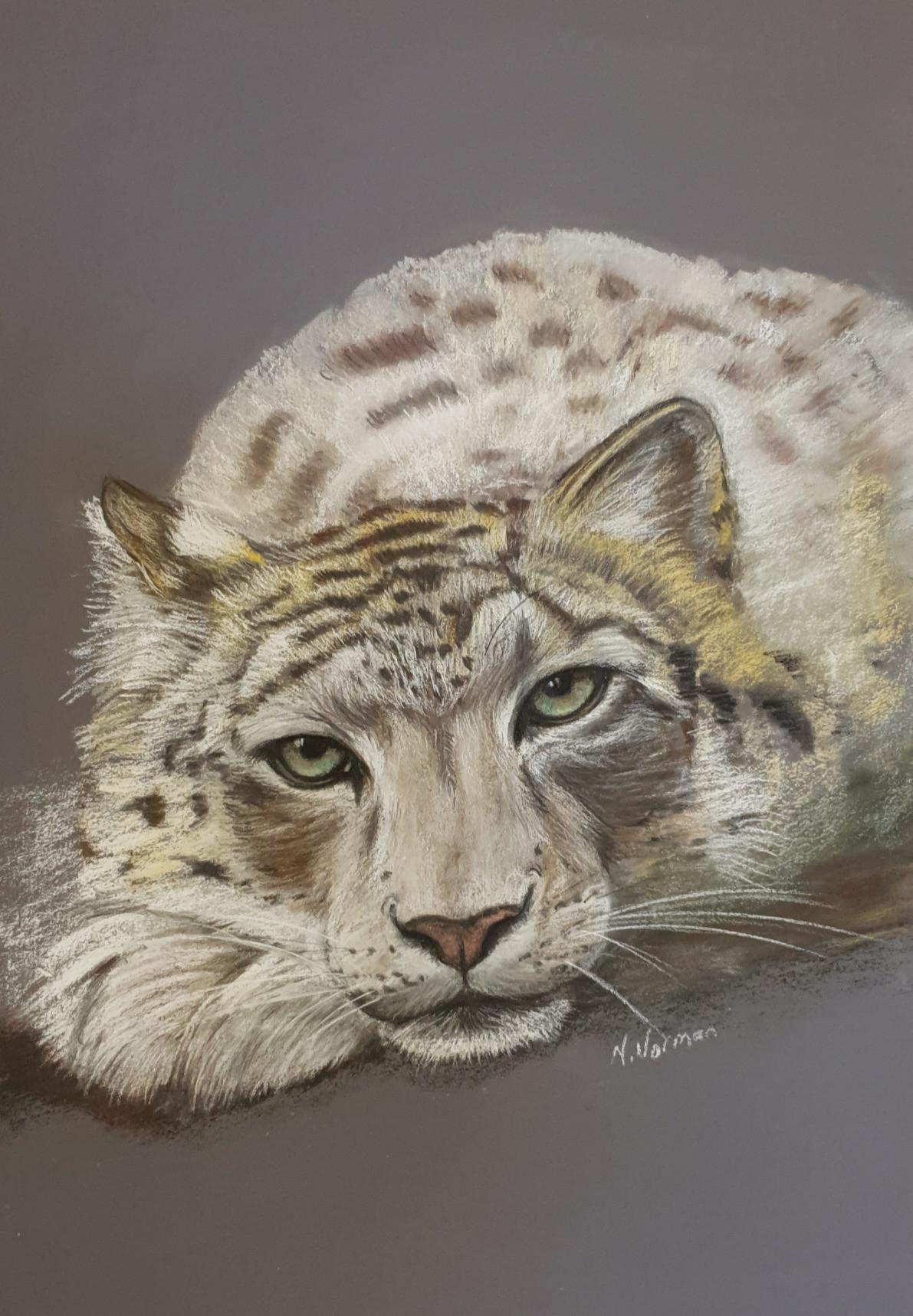 Tiger%201_edited.jpg