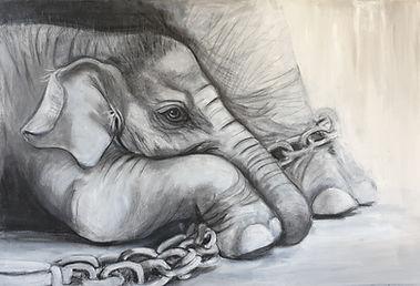 Elephant%202_edited.jpg