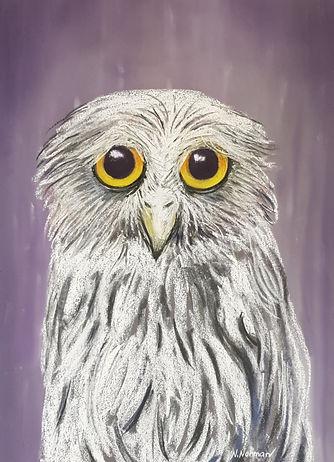 Owl%203_edited.jpg