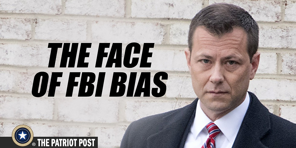 FBI Peter Strzok Swamp DC Swamp