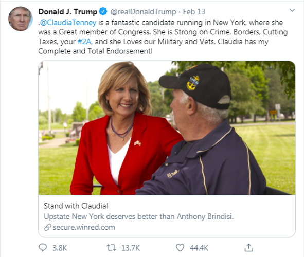 MAGA Candidate Claudia Tenney is the choice for New York CD-22 in November 2020 against DemonRAT Anthony Brindisi! #MAGA #KAG #VOTETRUMP #CLAUDIATENNEY #TRUMP2020