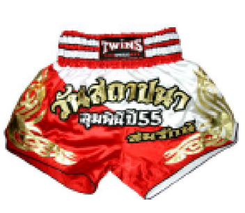 TWINS THAI BOXING SHORTS T-4