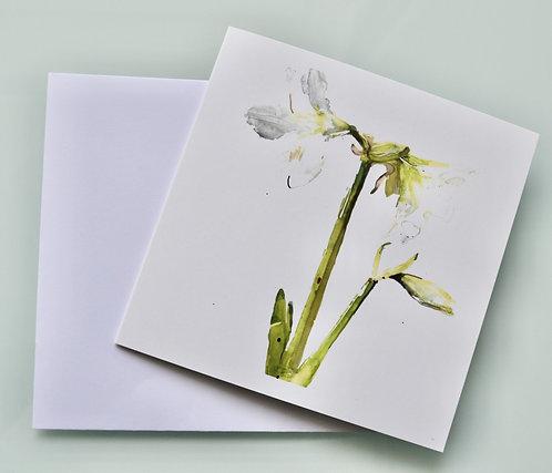Jenny Hunter - Greetings Card Gold Foil White Amaryllis