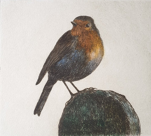 Greg Moore - Redbreast, Drypoint Etching