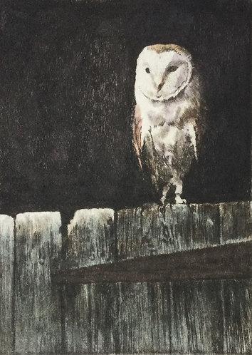Greg Moore - Barn Owl, Unframed Drypoint Etching