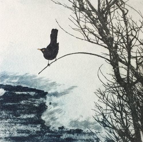 Greg Moore - Blackbird, Unframed Drypoint Etching