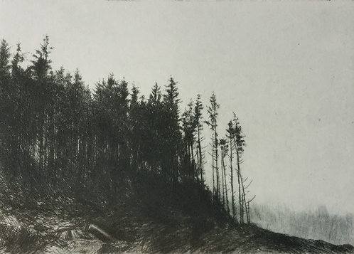 Greg Moore - Tyndrum, Drypoint Etching