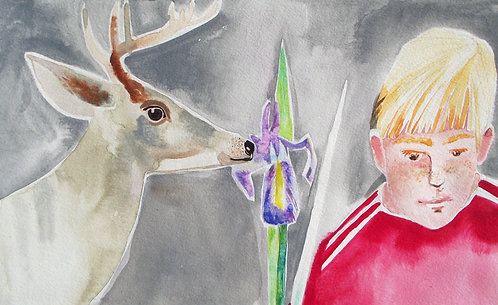 Maree Hughes - Stag, Boy, Iris, Watercolour
