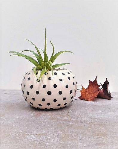 Ceri White Ceramics - Polkadot Round Planter