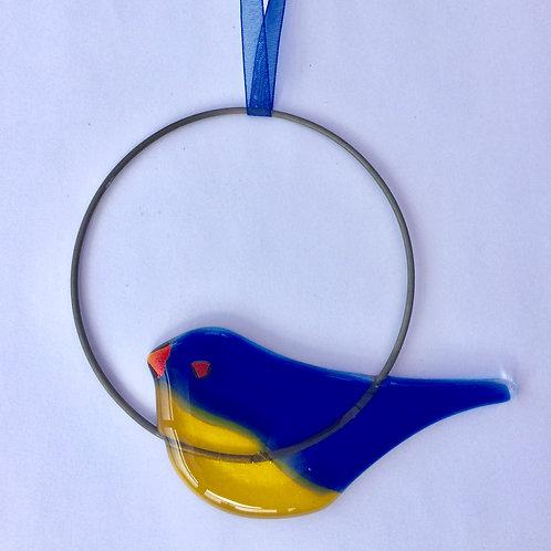 Bluetit Circle Hanging