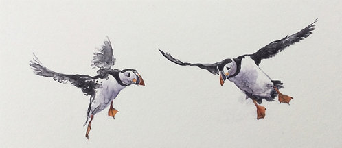 Greg Moore - Puffin 8, Unframed Monoprint