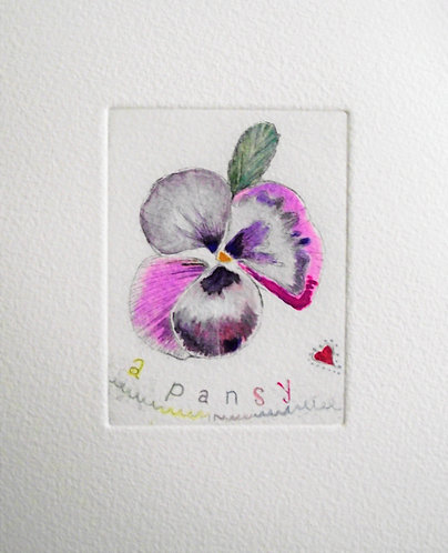 Maree Hughes - A Pansy, Etching