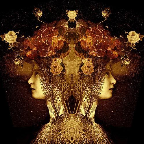 Ashley Cook - The Thinker's Garden, Digital Print