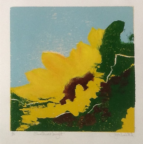 Joyce Leitch - Sunflower Bright