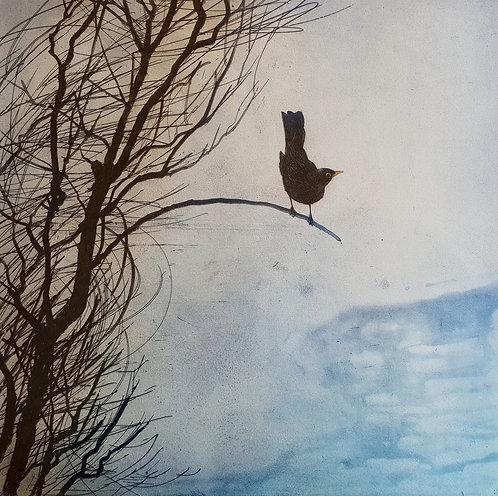 Greg Moore - Blackbird, Etching