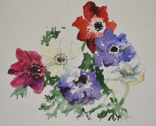 Jenny Hunter 'Bold Anemones', Watercolour