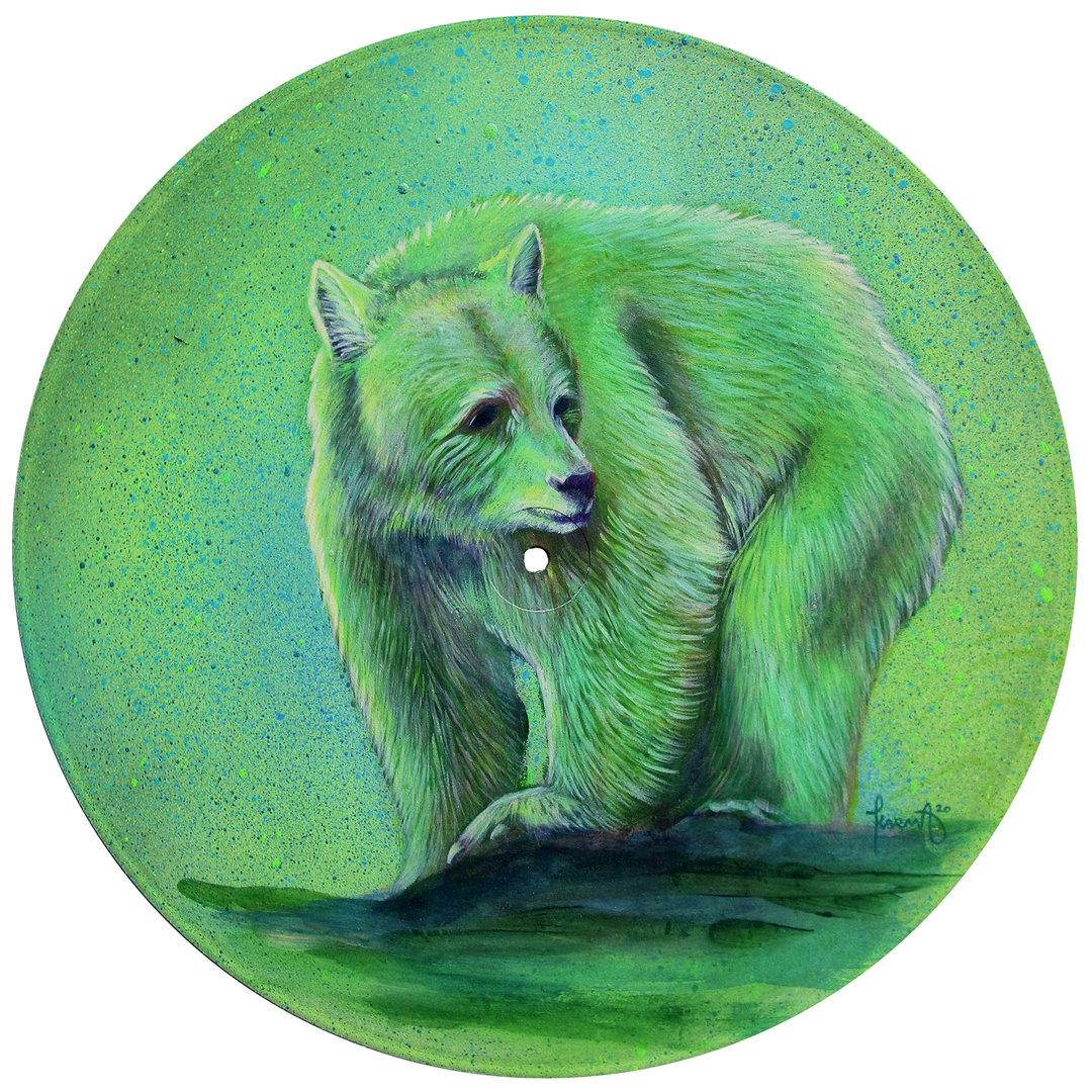 Moksgm'ol // Spirit Bear // Kermode