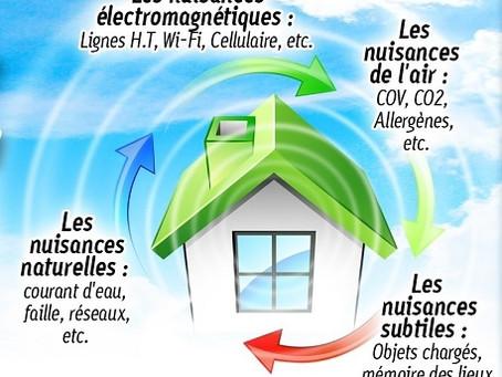 Exploitez le plein potentiel énergétique de votre milieu de vie !