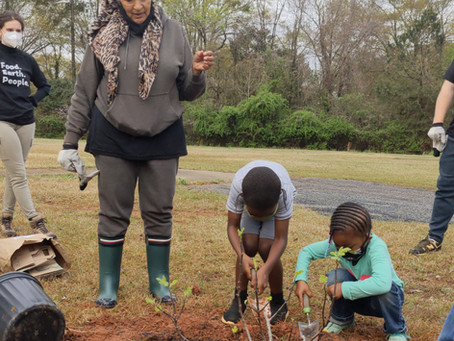 Planting fruit trees with The Mohammed Schools of Atlanta!
