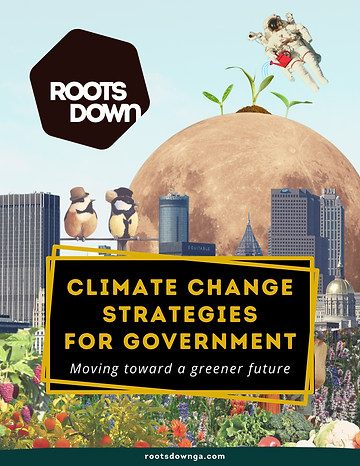 Climate Change Strategies for Government