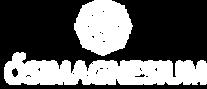 MG_logo2_white.png