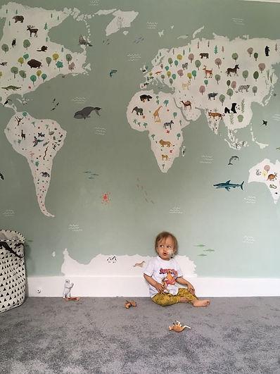 Teddy with wall.JPG