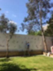 rRachel wall 1.JPG