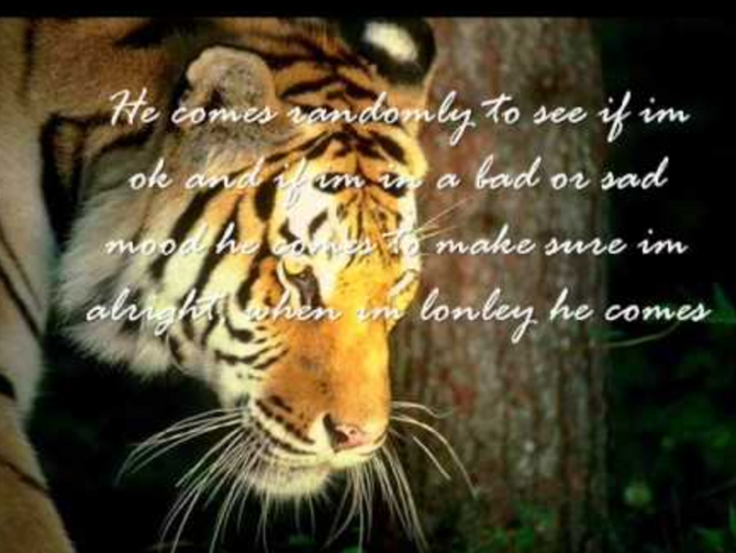Creating your Boundaries with Tiger Medicine and Durga