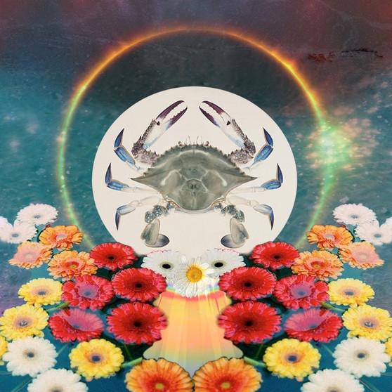 A jóga a gyökerek és a majdani virágzás