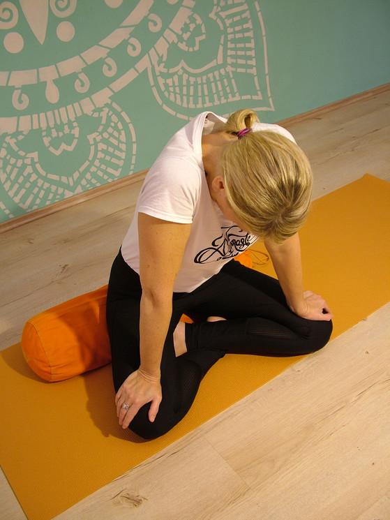Továbbképzések jógaoktatóknak!