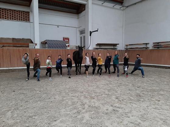 Akrobatika lovakon vagy jóga lovakkal?