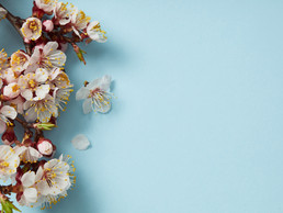 What Spring Teaches Us About Worrying and Self-Doubt