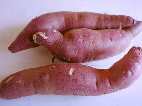 CBD Sweet Potato & Chipotle Hummus