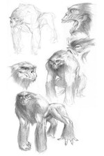 Ape Creature Concept