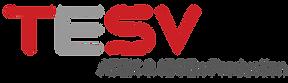TESV Logo long 300 x 300.png