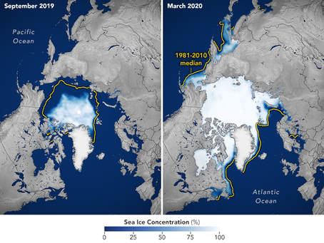 Arctic Sea-Ice Traige, Carbon Cycle Restoration, and a Renewable Energy and Materials Economy