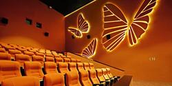 Cinema Design - FUTURE AMAZON I