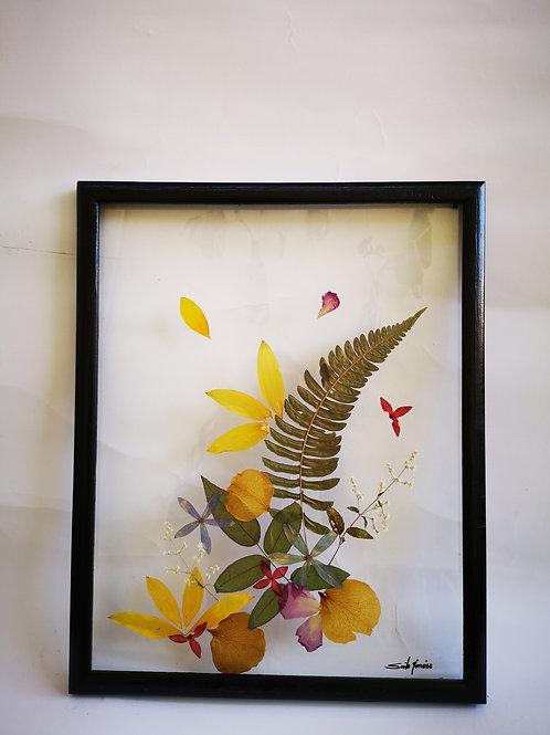 Cuadro 12x15 pul, helecho, flores y hojas naturales secadas y preservadas.