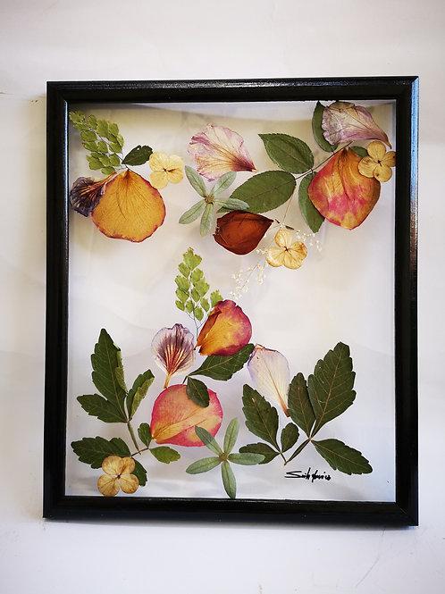 Cuadro floral 11x13 pulg, flores y hojas naturales secadas y preservadas