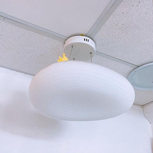 Pendant Light 5105