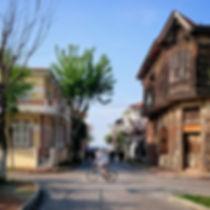 Urban Fox - When Time left behind Urbanizaton onPrinces' Island, Istanbul, Turkey - Travel Blog Button