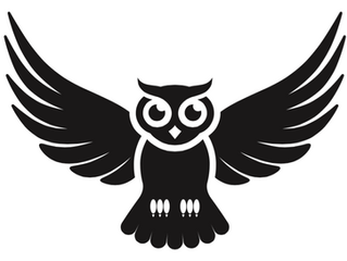 New Logo and Owl Icon