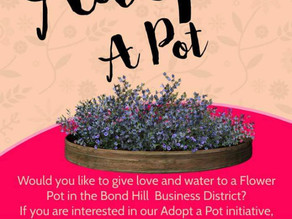 Adopt a Flower Pot in the business district!